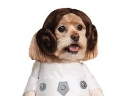 Cachorros vestidos como personagens de 'Star Wars'